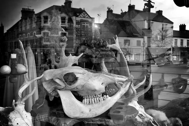 Bones of Avalon