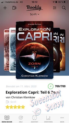 200311 CorporationCapri6