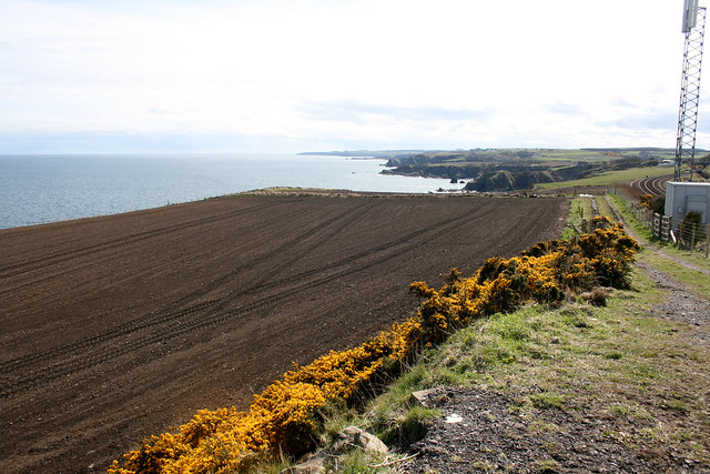 The coast north of Muchalls