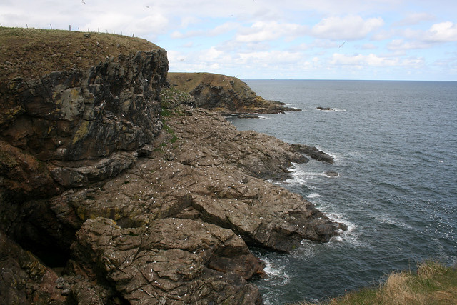 The coast near Downies