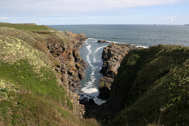 The coast south of Aberdeen