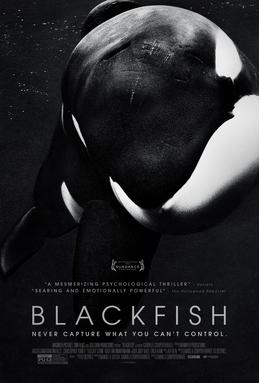 黑鯨(Blackfish)