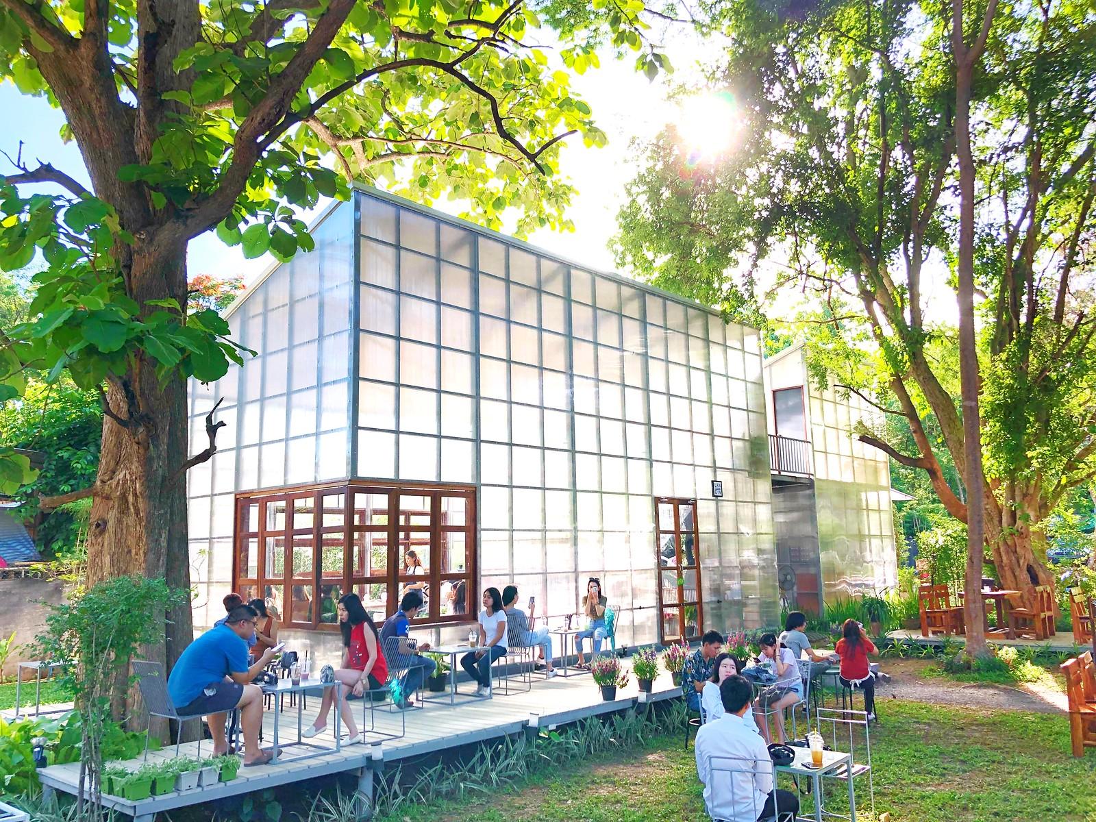 森林中的溫室咖啡 LANDIN Chiangmai