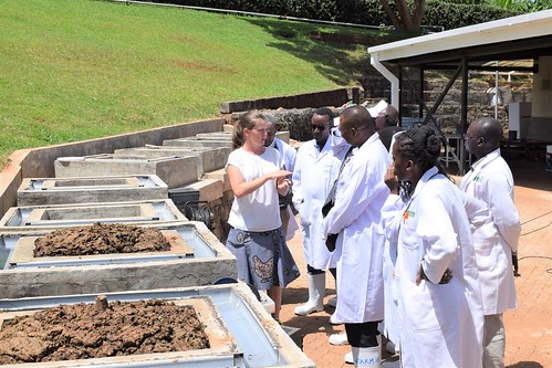 On February 18 and 19 2020, ILRI hosted key staff from the Climate Change and Livestock directorates within the ministries of environment and agriculture in Ethiopia, Kenya and Uganda, to learn about ILRI's research on climate change and livestock.