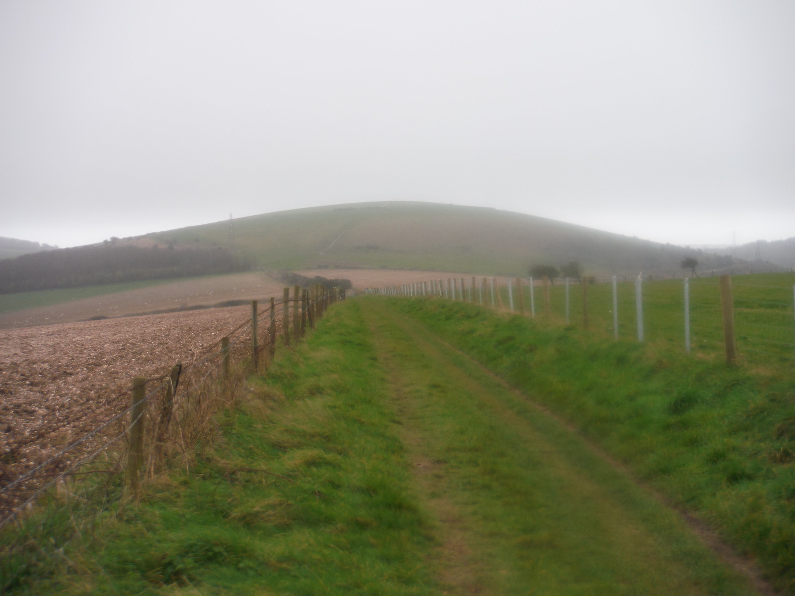 Steep Down SWC Walk 26 - South Downs Way: Amberley to Shoreham-by-Sea or Lancing