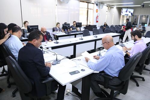 6ª Reunião Ordinária - Comissão de Desenvolvimento Econômico, Transporte e Sistema Viário