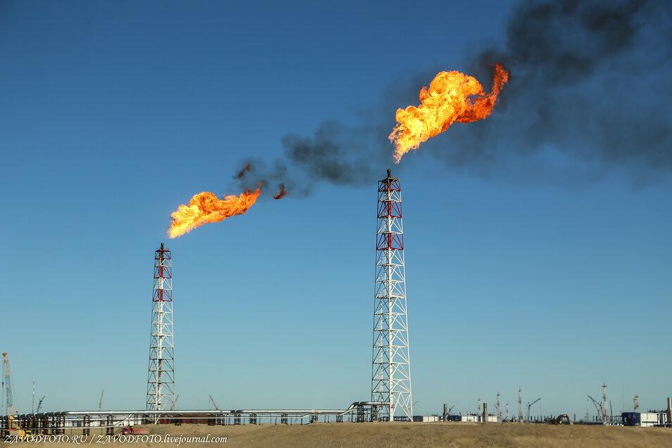 В чём сила России в нефтяной войне