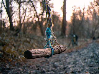 The Porthkerry Rope Swing