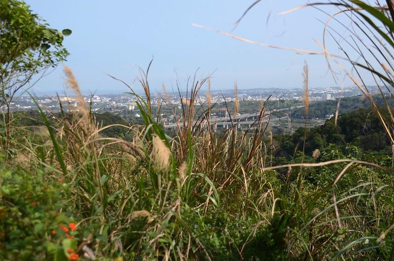麻園坑山山頂西邊展望