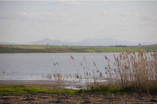 Laguna Ruíz Sánchez