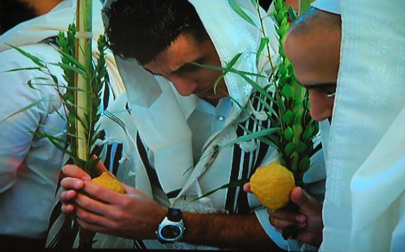В поисках идеального фрукта DSC_7226