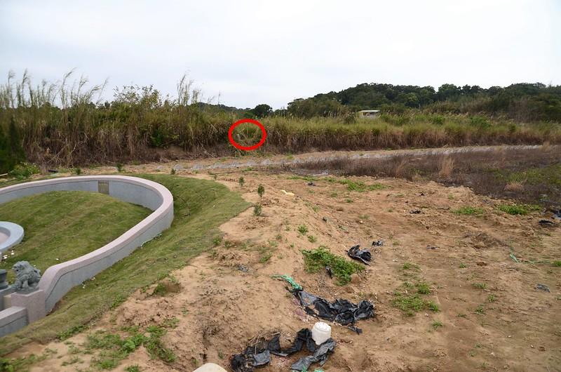 秤頂埔山(頭湖)渡(26)土地調查局圖根點點位