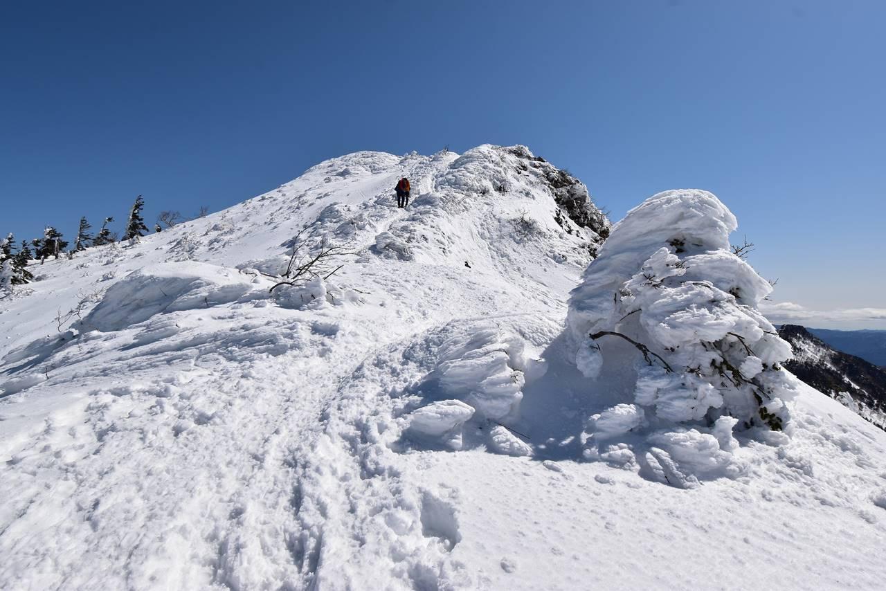 武尊山の樹氷