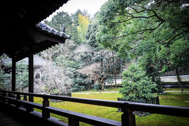 Shoren-in Temple, moss garden view
