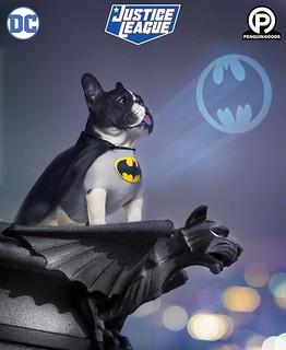 法鬥犬化身超萌英雄!Penguin Goods「MINI COSPLAY DOG」系列第一彈 蝙蝠俠犬 1/6比例塗裝完成品(コスプレ ドッグ コレクションフィギュアシリーズ CD#001 バットマン)