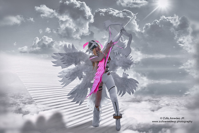 ANGEWOMON  ☀ (Digimon)