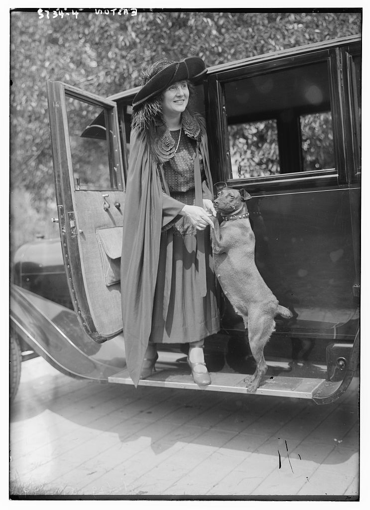 Easton [with dog on dashboard of car] (LOC)