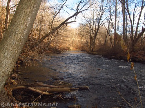 At the end of the main trail, the path just sort of... ends in the river!  Channing H. Philbrick Park, Penfield, New York