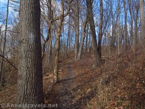 The Honey Creek Trail, Channing H. Philbrick Park, Penfield, New York