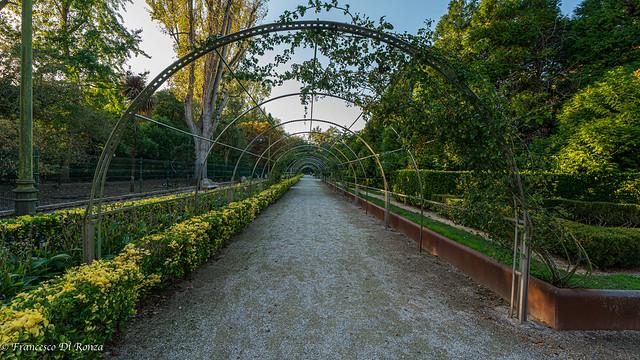 pergola Parque Isabel la Catolica .)1910/6000