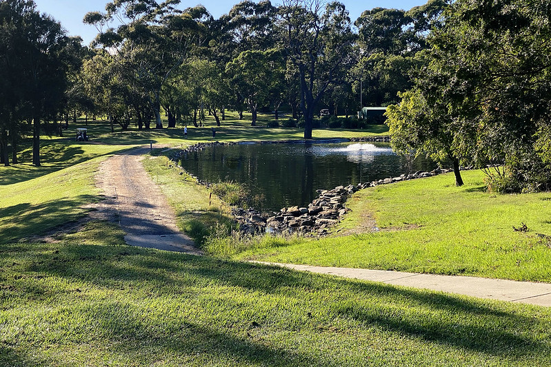 Cammeray Hole 6