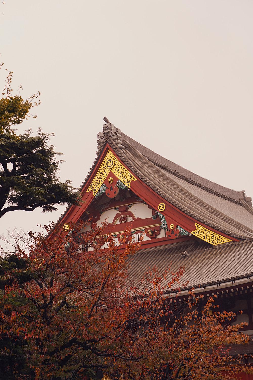 17japan-tokyo-sensoji-shrine-temple-travel