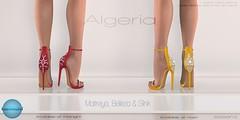 Essenz - Algeria (Midnight Madness)