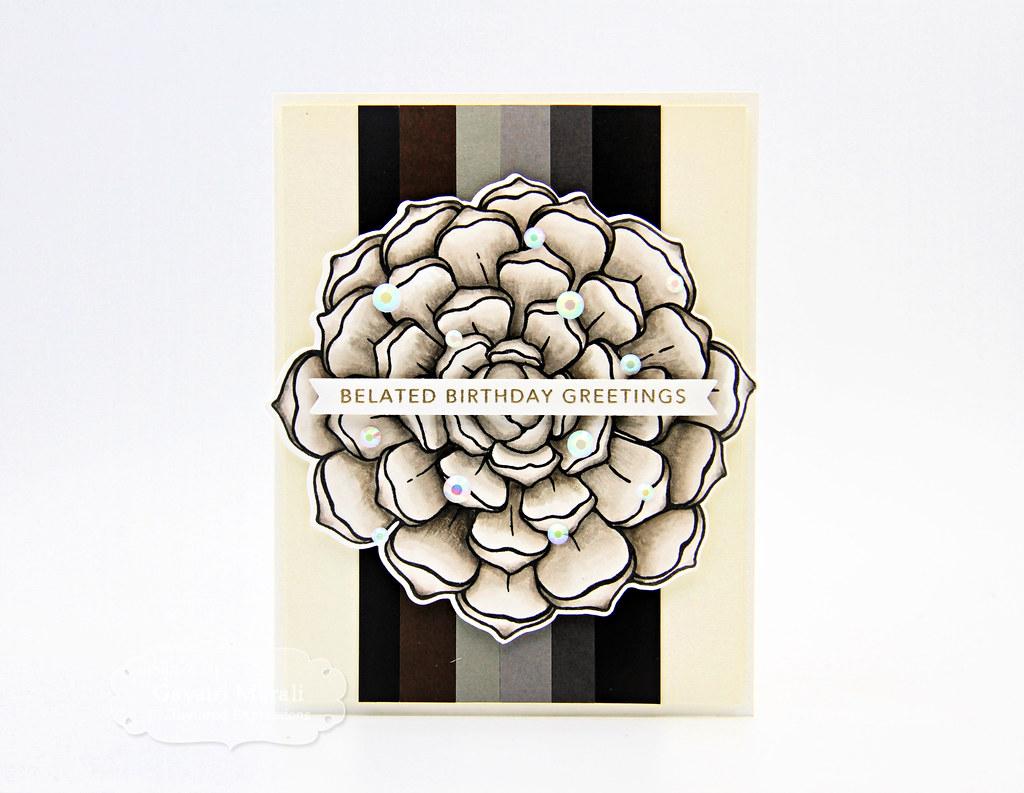 Patagonia card