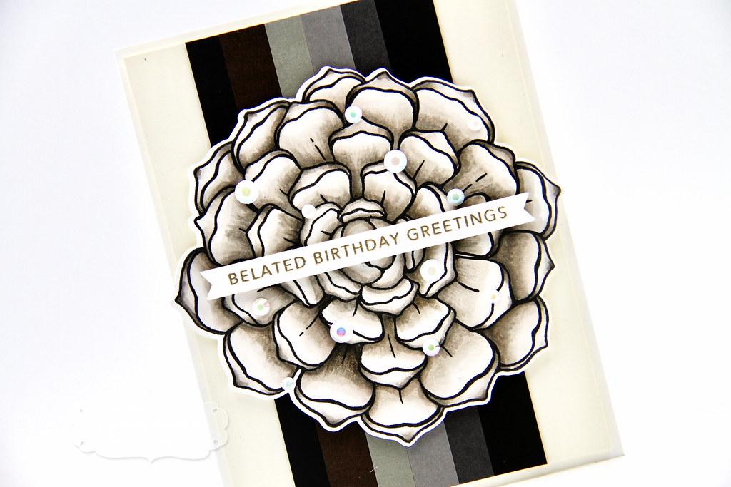 Patagonia card closeup