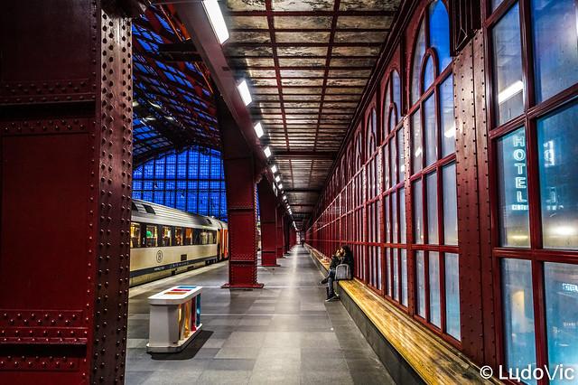Anvers/Antwerpen 2020 (12)