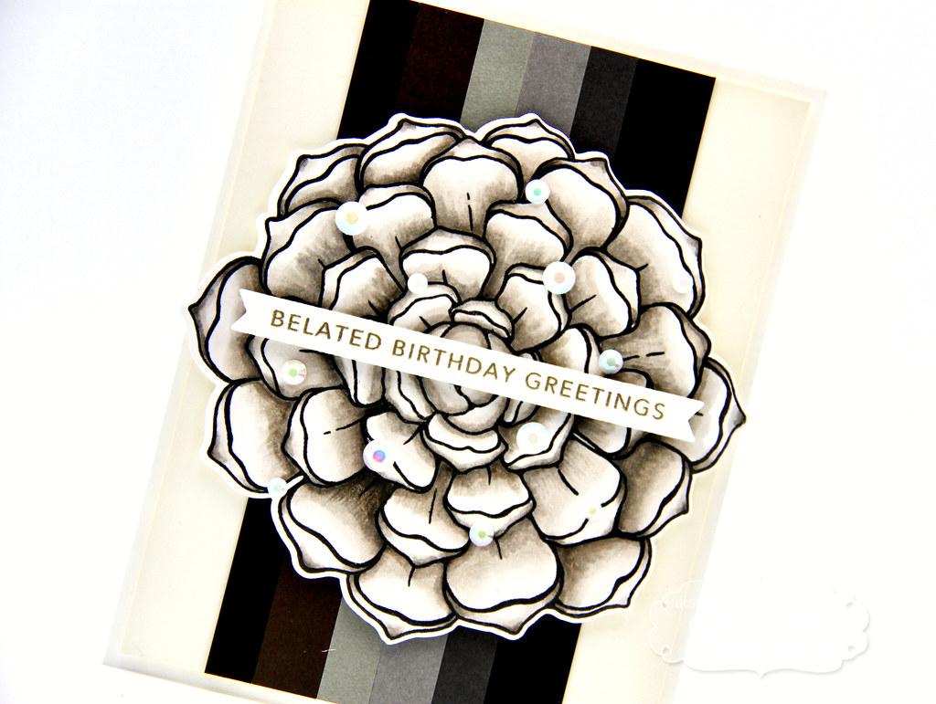 Patagonia card closeup1