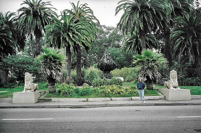 de Young - Golden State Park - Demolished in 2005 - Remaining  Vases & Sphinxes  & Palm Trees