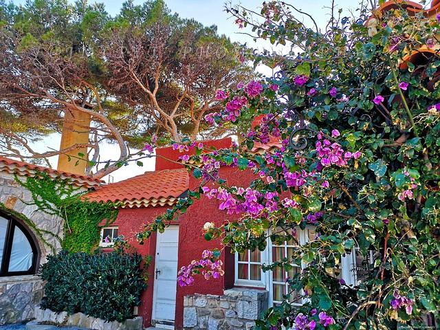 île de Bendor sur la Côte d'Azur France -IMG_20191109_151506