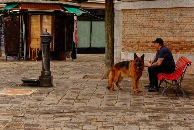 Venezia / Campo San Polo / A dog's life  1/2