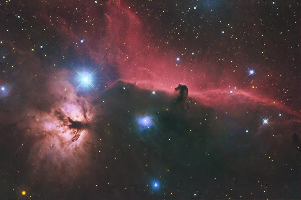 The horsehead and burning tree nebulae