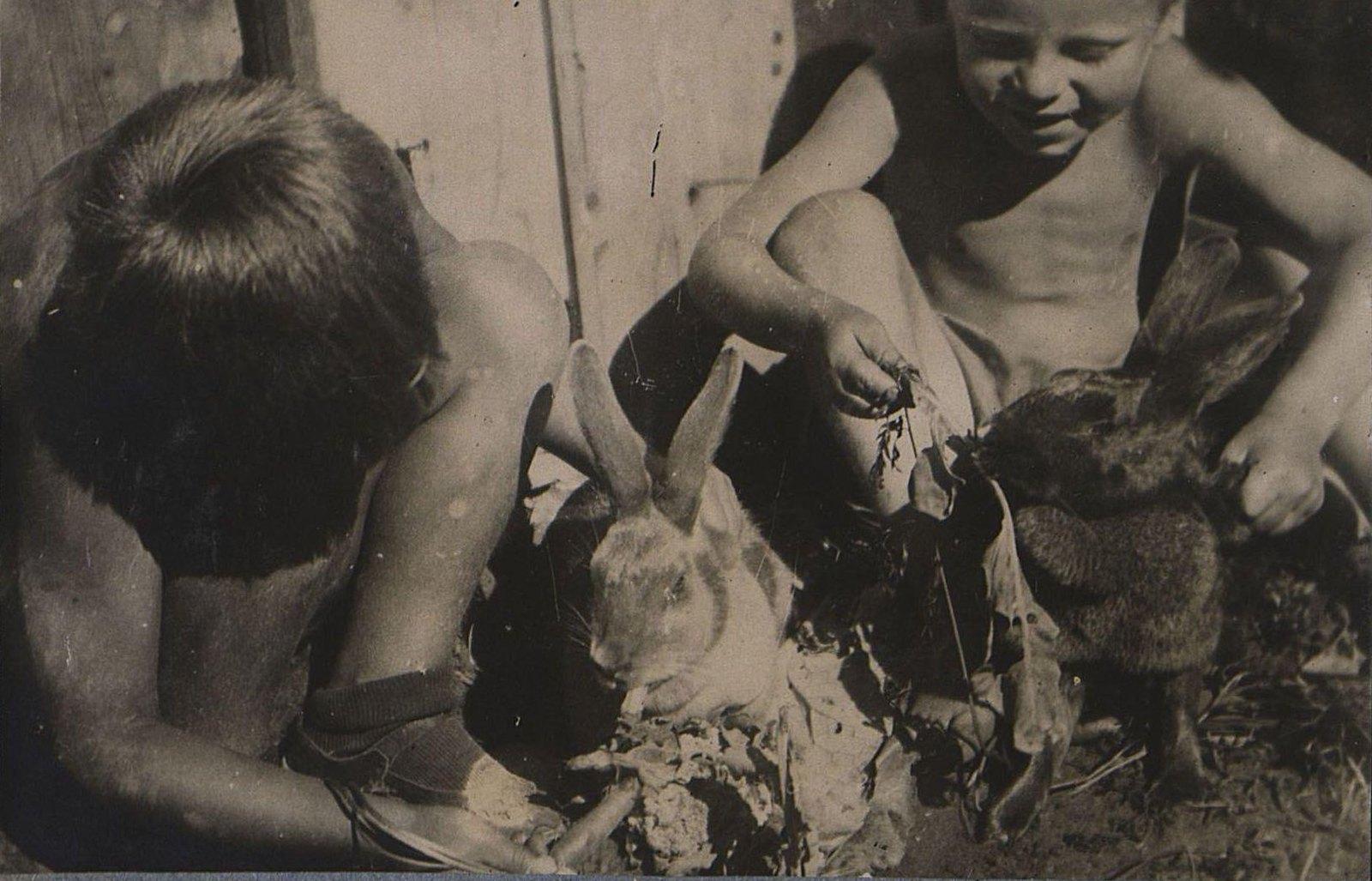 47. Дети с кроликами