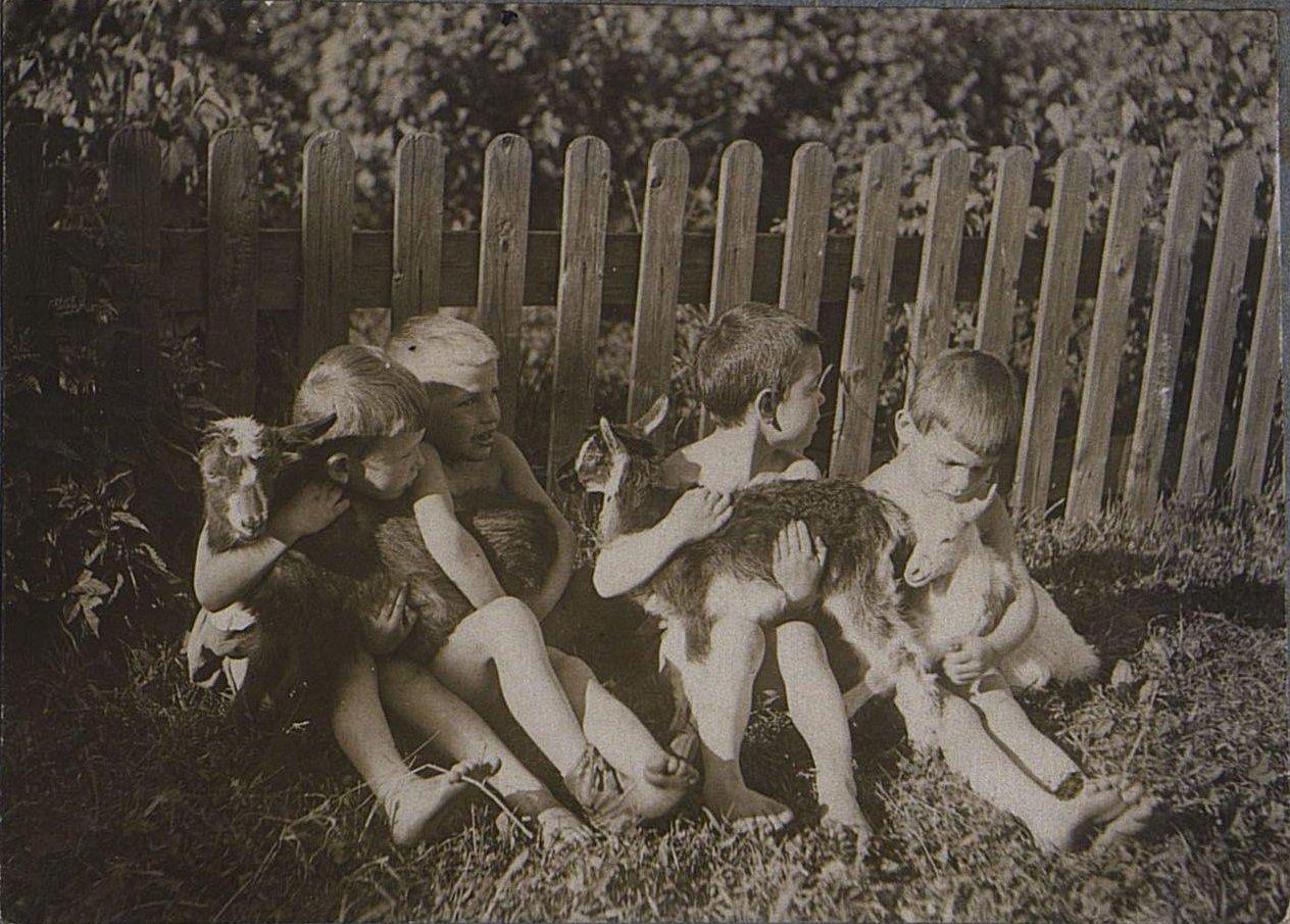 44. Дети с козлятами.