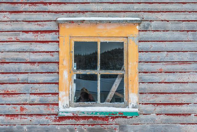 Window in Dunfield, Newfoundland