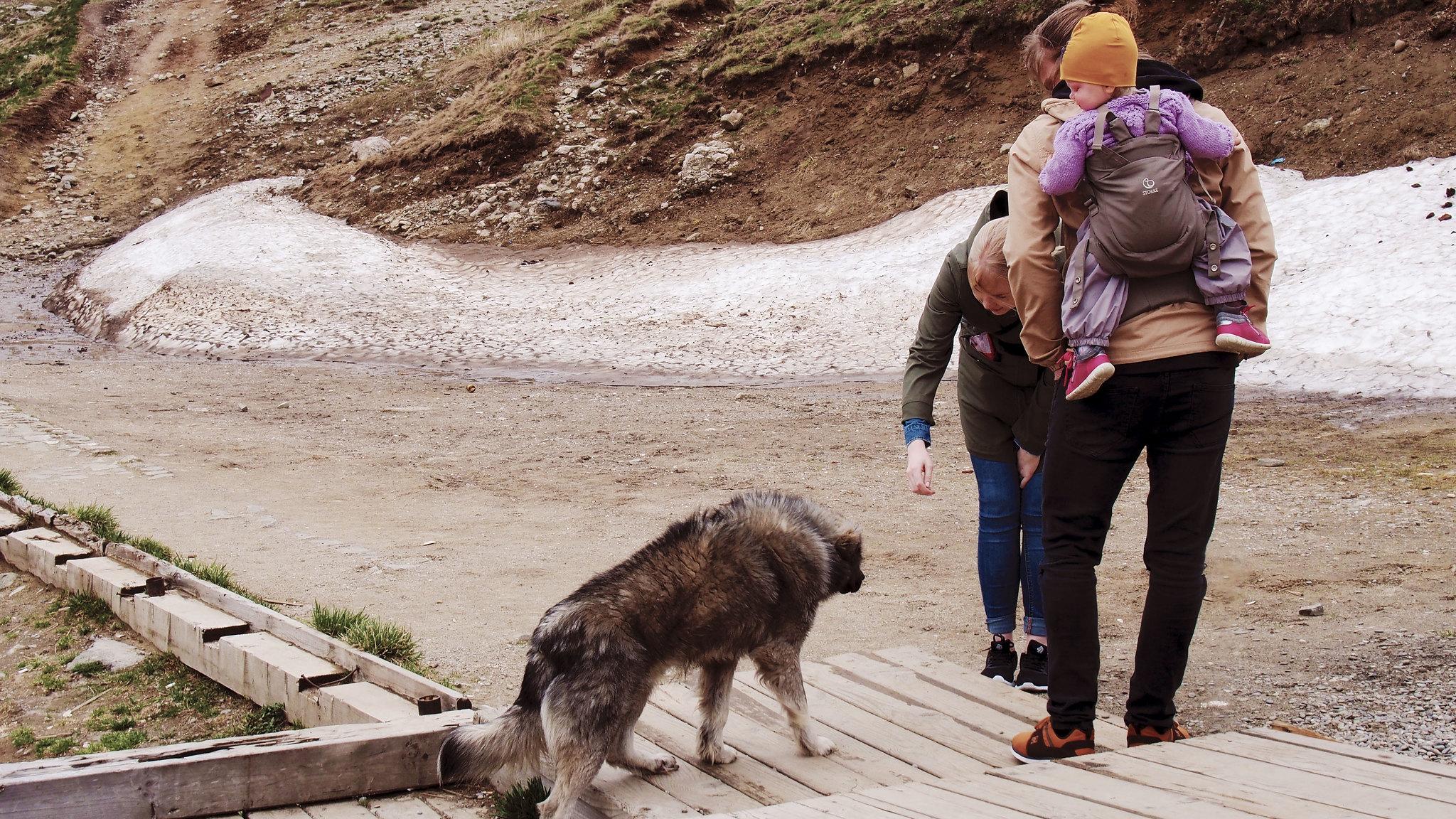 Romania Sinaia road trip lapsen kanssa
