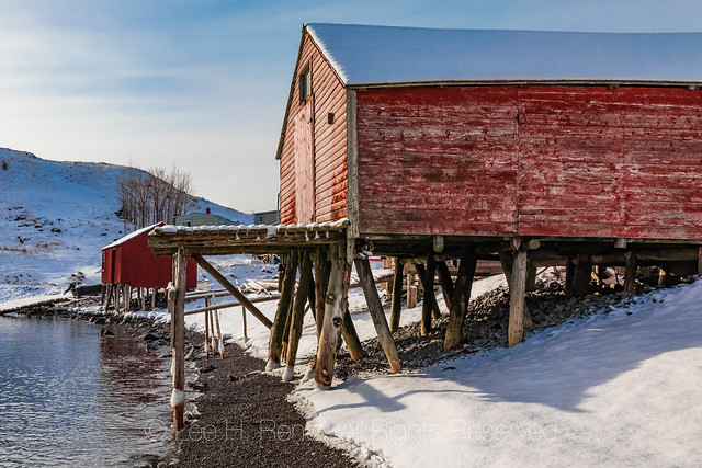 Stages along the Shore in Dunfield, Newfoundland