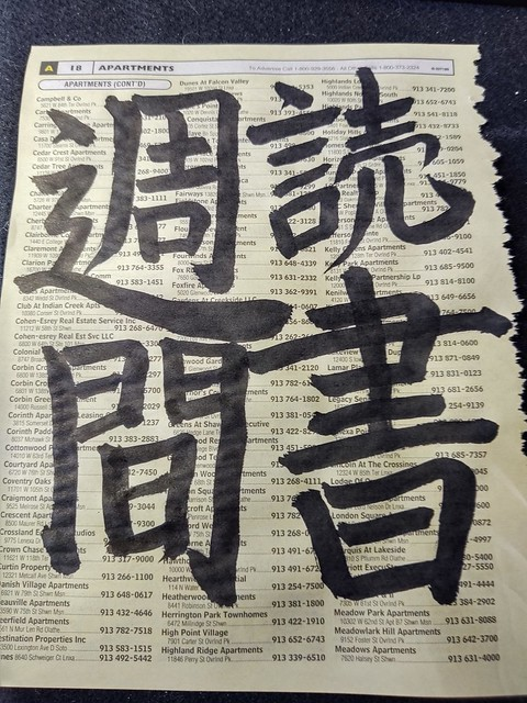 20_doku_sho_shu_kan_on_phonebook_paper