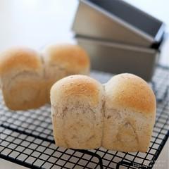 自家製酵母全粒粉ミニ食パン 20200312-DSCT3583 (2)