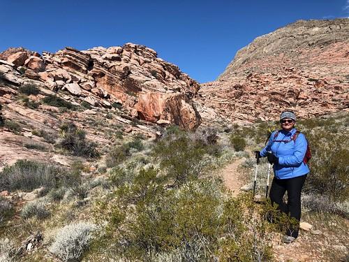Nevada - Tammie leading the hike near Calico