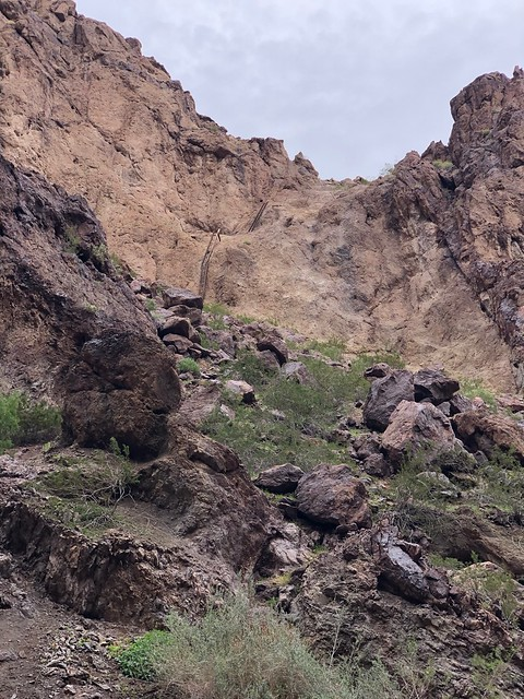 Nevada - Gold Strike Hot Springs alternate path