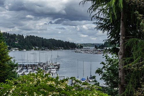 gigharbor finholmviewclimb sky cloud plant tree water harbor boat washington unitedstatesofamerica pacificnorthwest pnw saltwater piercecounty postedonflickr photosbydavid jfflickr pugetsound