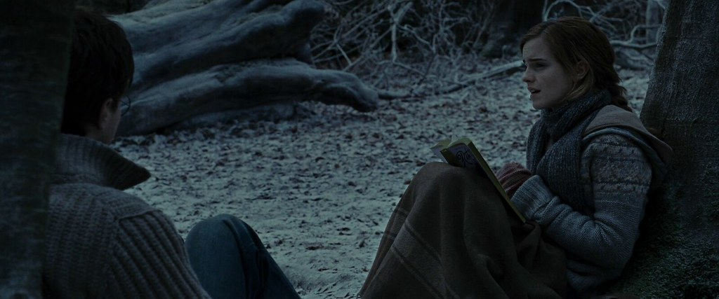 Harry and Hermione in The Forest of Dean