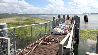 Construction on the Chek Jawa Boardwalk