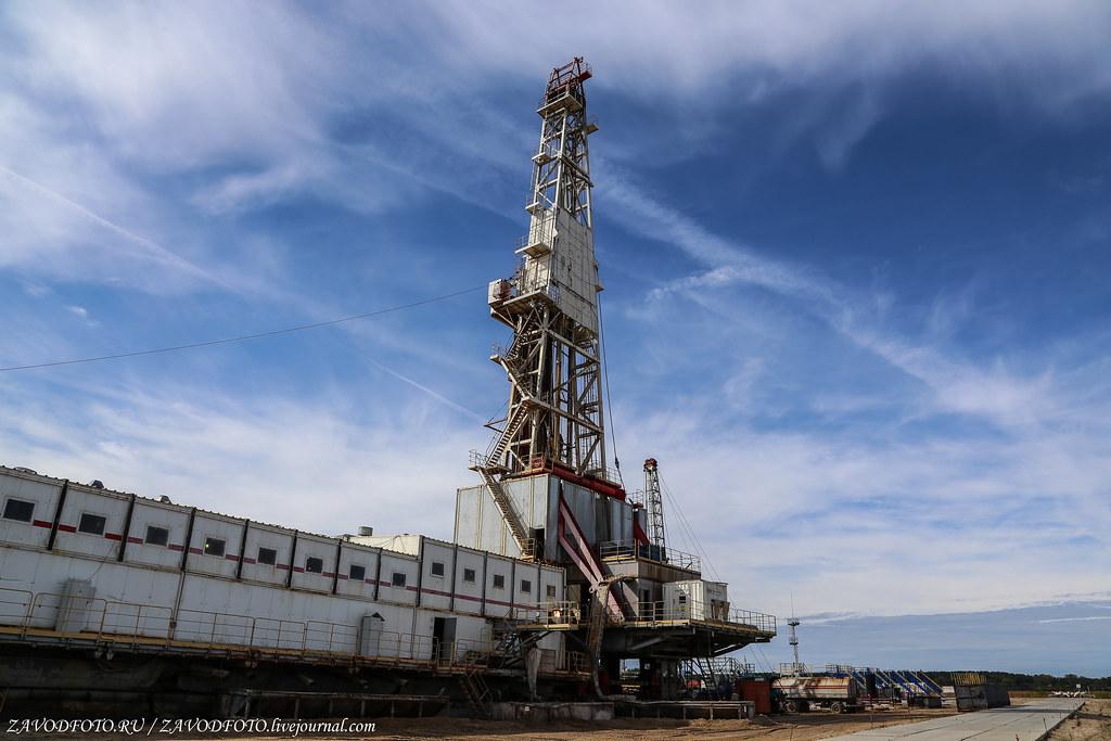 Саудовская Аравия предложила Беларуси покупать нефть у них, а не у России, 1