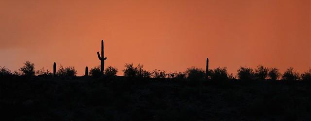Sunset Horizon Burrow Creek Campground 7D2_5937
