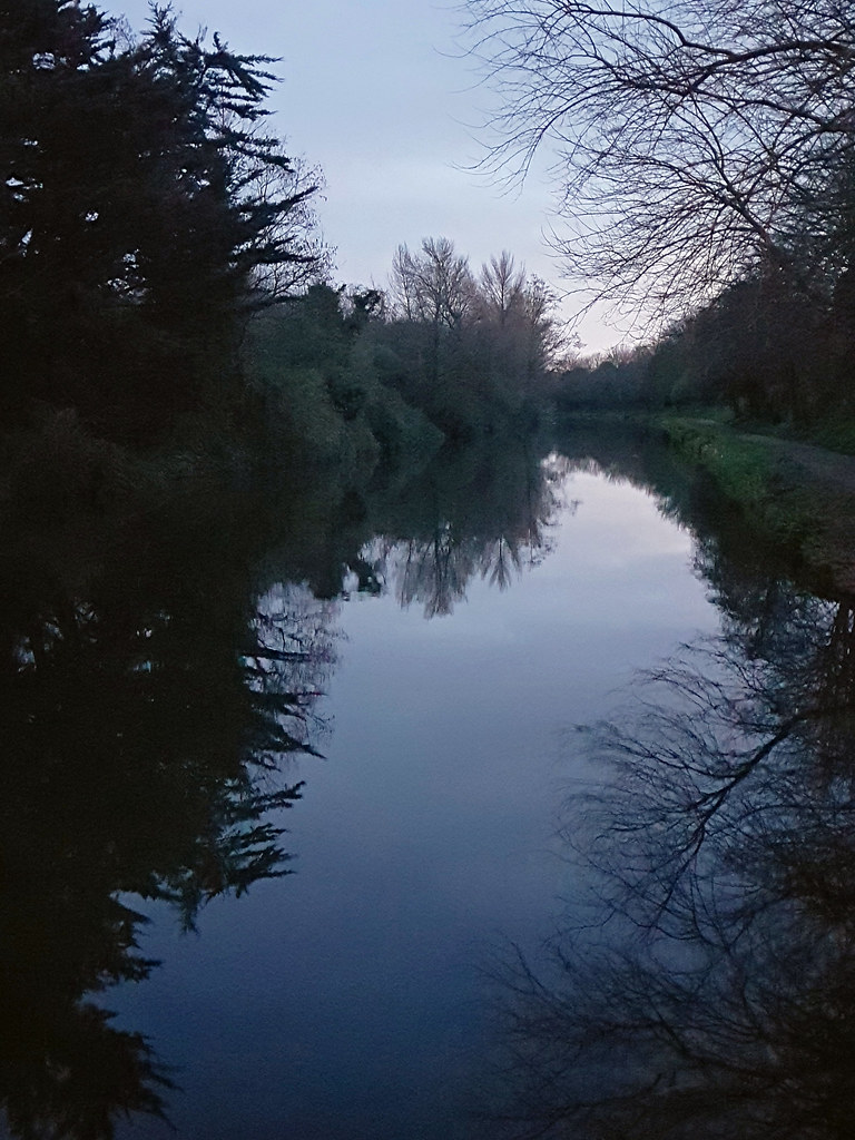 An evening on Chichester Canal